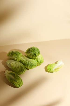 Baby cabbage on beige background