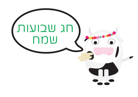 Shavuot Jewish holiday Greeting. Cow vector illustration and Hebrew greeting on white background