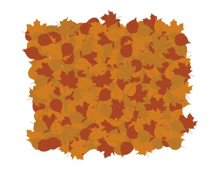 Vector Brown Fall Leaves on White Background