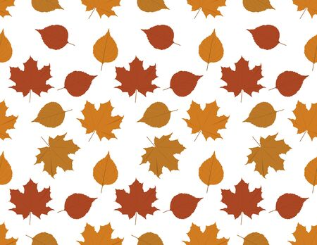 Vector Brown Fall Leaves Seamless Pattern on White Background
