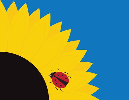 Latge Vector Sunflowers and Ladybug on Blue Background