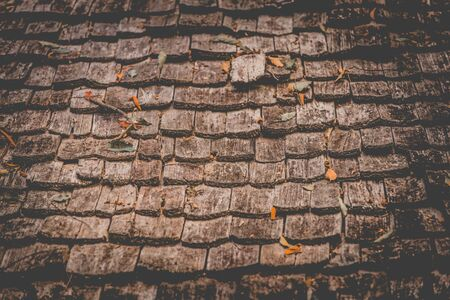 oldened: Close Up Wooden Tile Background