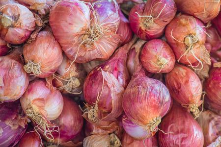 shallot: Shallot onions