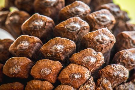 lamina: pine cones close up