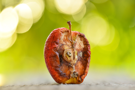 decompose: Old bad dry half apple on the green background Stock Photo