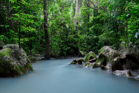 water fall and rain forest