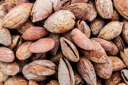 Stack seed of the almond brown Stock Photo - 17630790