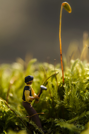 ordeal: miniature figurine on a bed of moss,macro photo
