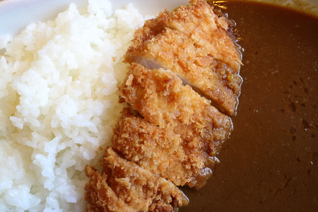potstickers: Japanese food style, rice with fried chicken