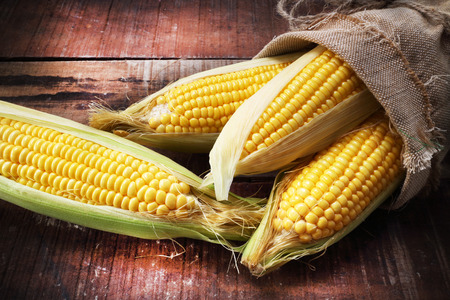 elote: maíz fresco sobre la mesa de madera Foto de archivo