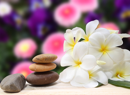 zen spa: Zen spa concept background - Zen massage stones with frangipani plumeria flower