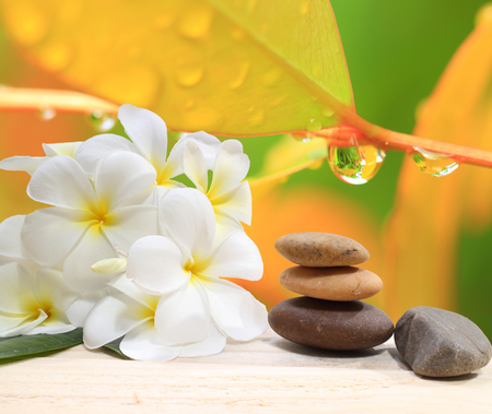 zen: Zen spa concept background - Zen massage stones with frangipani plumeria flower and Water drops on the nature background