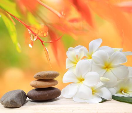 Zen spa concept achtergrond - Zen massage stenen met frangipani plumeria bloem en water druppels op de achtergrond van de natuur Stockfoto - 48959385