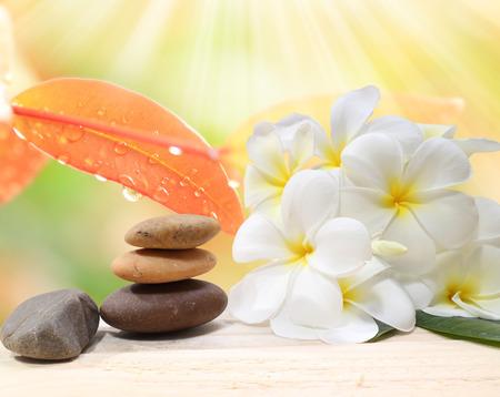 piedras zen: Fondo de Zen concepto de spa - masaje de piedras zen con la flor del frangipani plumeria y gotas de agua en el fondo de la naturaleza Foto de archivo