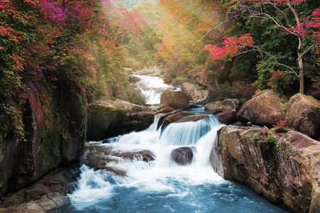 waterscape: romantic autumn wonderful waterfall with magic colour of leaf and tree  in deep forest at national park, Thailand.