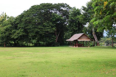 잔디 필드와 녹색 환경의 풍경 자연 백그라운드, 배경으로 공공 공원 사용