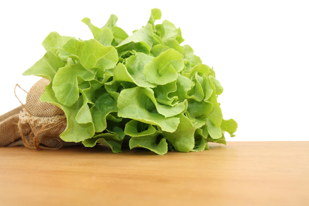 Various green  vegetables in row on white background. Stock Photo