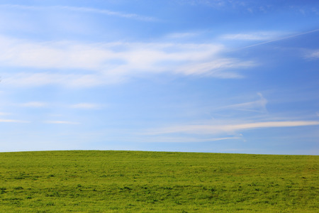 abstract of sky  and green ground background