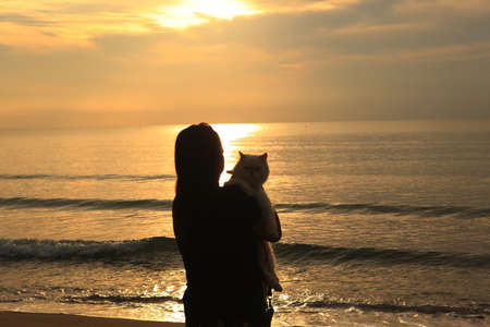 woman with cat on beach , Young asian woman with her cat at sunset , silhouette at sunset