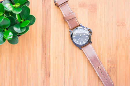 morning noon and night: Wristwatch the beautifully arranged on a wooden table with a green tree, complete the composition. vintage soft tone
