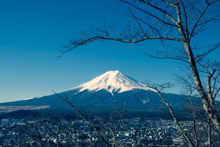 View of Mount Fuji with tree, Fuji san in Japanese, Mount Fuji's exceptionally symmetrical cone, which is snow capped for about five months a year. It is a well known as the symbol of Japan.