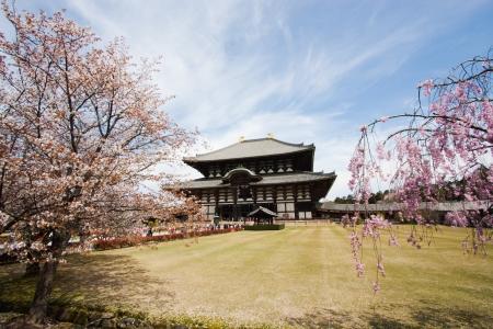 todaiji: Nara Todai-ji temple