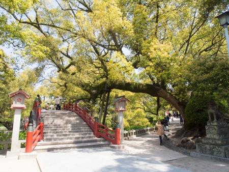 japanese bridge: Way over Japanese bridge in Kyushu, Dazaifu Tenmangu Editorial