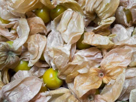 Golden Strawberry (Physalis) photo