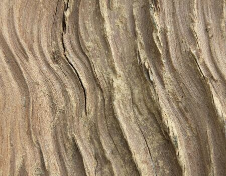 Background Texture of Weathered Wooden Beam With a Knot. photo