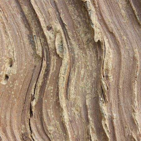 Background Texture of Weathered Wooden Beam With a Knot.