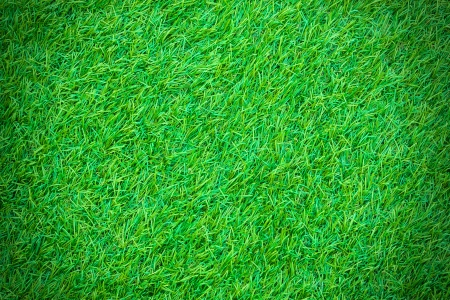 carpet grass: Green artificial turf pattern ,texture for background