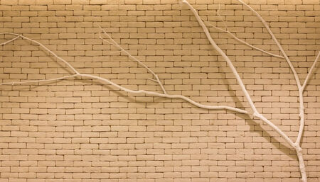 Twig on brick wall  Stock Photo