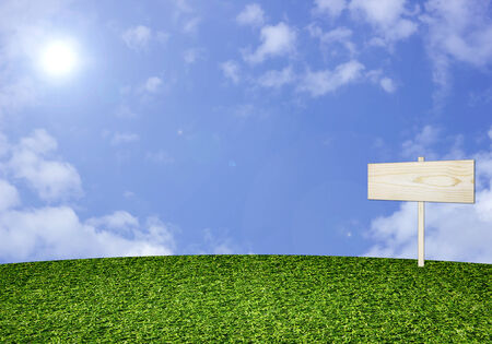 Green grass and Wooden sign on  sky background photo