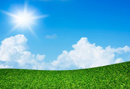 Green field under blue sky and sun