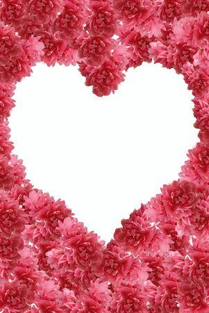 peach flower frame in form heart  photo
