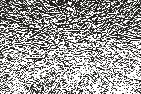 b n: Abstract Illustration Background gradient in black and white B   N Ramifications irregular