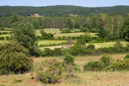 poplar  banks: Meadows landscape with bushes and hedgerows, groves of poplar and oak woodland or forest on the banks of river   Province of Leon   Spain