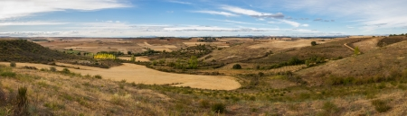 poplar  banks: Panoramic landscape with rolling hills dry, cereal crops, trees, autumn poplar plantation, dirt roads and blue sky with clouds  Valduvieco  Mellanzos  Leon  Spain