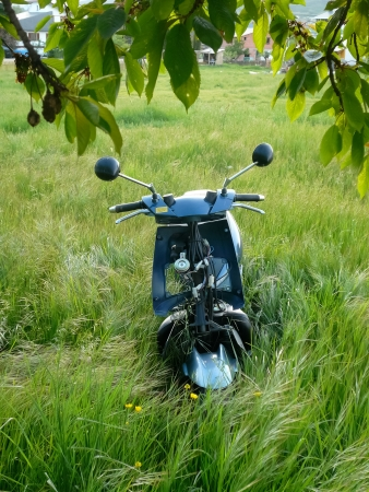 Motorcycle damaged and removed in grass meadow photo