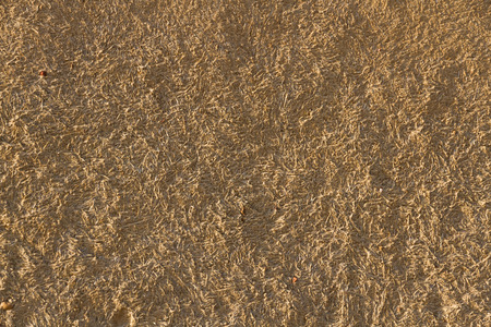 Texture or background wall ocher adobe  mud mixed with straw baked in the sun