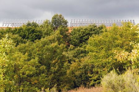 Solar panels with cloudy sky overhead and grove or oak forest in the foreground photo