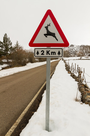 km: Traffic signal at danger (with the image of a deer, wild animals Announces a distance of 2 km of road in snowy winter landscape