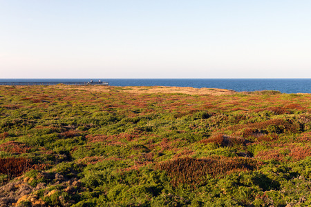 extremity: Beautiful blanket of vegetation with fall colors. In the background I walk with balcony and wooden handrails with two people sitting on the roof of extremity. Further back the sea with a strong blue. Bay of Biscay Coast Sea. Lugo. Galicia. Spain