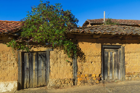 old doors: Old rural buildings, dilapidated, made with adobe and wooden doors. On the facade sprouts a plant with fruits of black elderberry