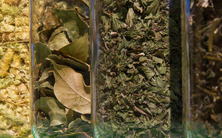 laurel mountain: Glass containers with mixed plants, leaves of aromatic herbs used to flavor foods or teas. Tea, oregano, bay leaf and mint Stock Photo