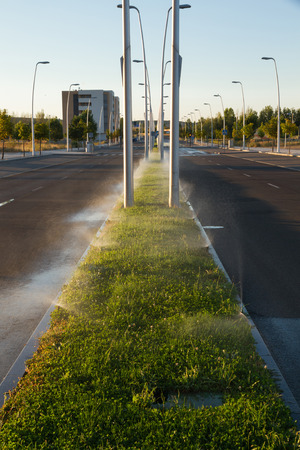 summer trees: Sprinkler Irrigation in the Middle of an Avenue - Sprinkling on grass mediate an urban avenue, at dawn