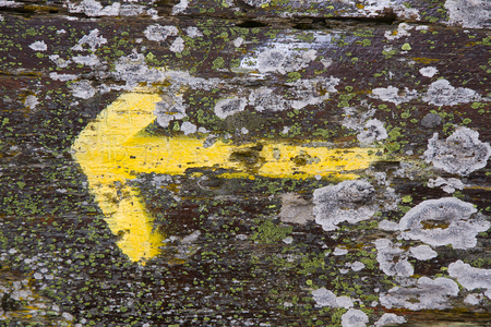 jacobean: Arrow signaling yellow lichens on rocks sprouted indicating the address in the Road to Santiago