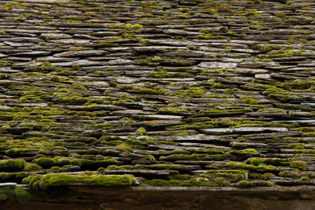 slate roof: Detail of old slate roof moss and lichen With, In rural area