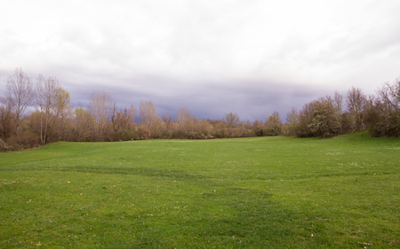 poplar  banks: Green meadow in spring, surrounded by trees and shrubs, stormy and cloudy sky