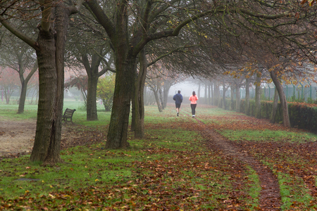 outdoor exercise: Runners Joggers in an Autumnal Park With Fog - Man and woman running, playing sports on a city park, a path full of fallen leaves of trees making an arch. On the morning of a foggy day in autumn